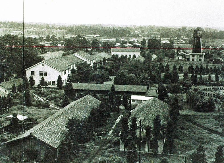 大学旧本部棟周辺(昭和36年)